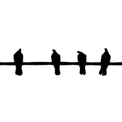 Birds_on_a_wire_2